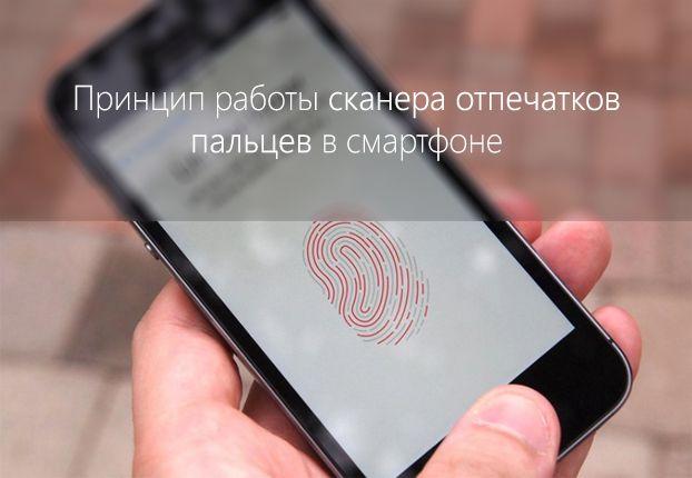 Виды и принцип работы сканера отпечатков пальцев в смартфоне