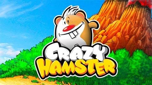 Crazy Hamster забава интересах Nokia N9